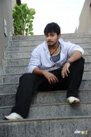 Tanish Photos (12)