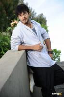 Tanish Photos (13)