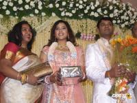 Meena Marriage Reception Photos (16)