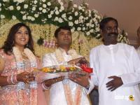 Meena Marriage Reception Photos (2)
