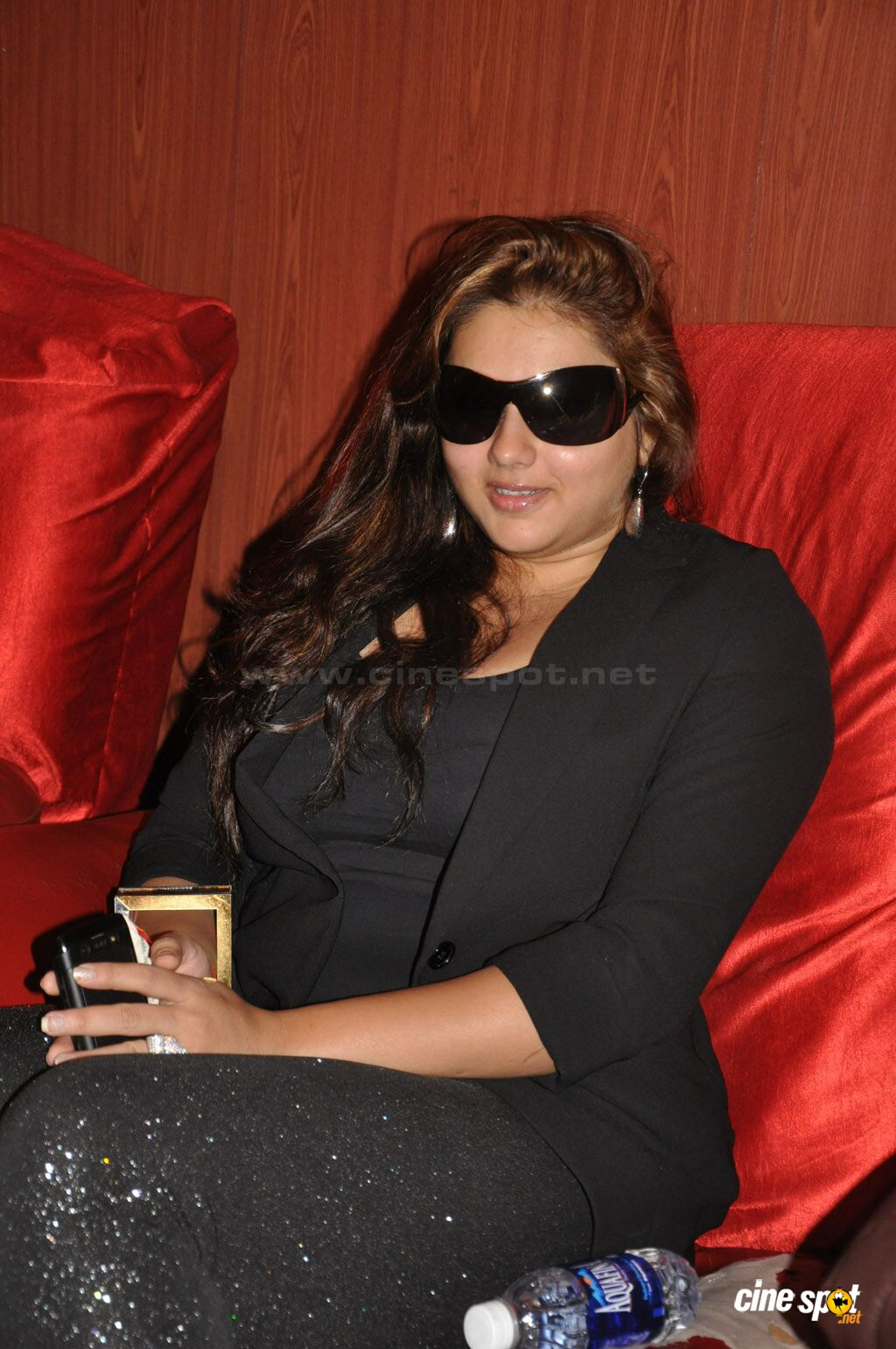 Namitha Photos (2)