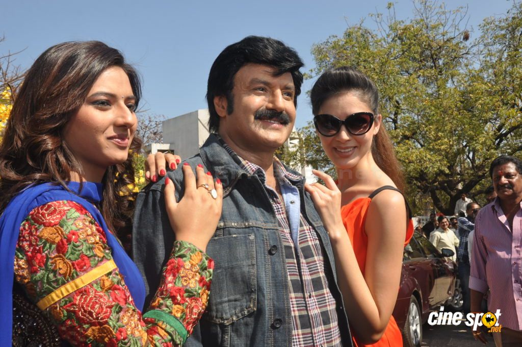 Balakrishna New Movie Opening (48)