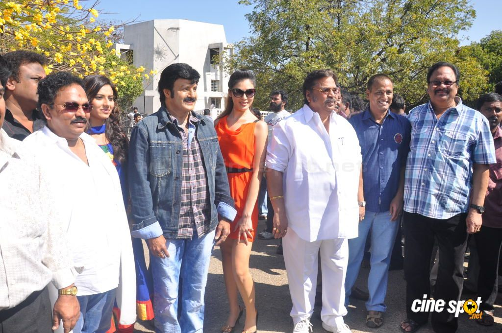 Balakrishna New Movie Opening (49)