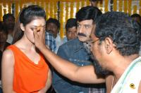 Balakrishna New Movie Opening