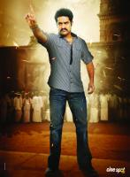 Junior NTR New Stills (1)