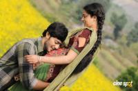 Neeku Naaku Dash Dash Telugu Movie Photos Stills