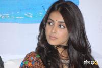 Genelia Latest Stills (45)