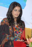 Genelia Latest Stills (46)