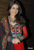 Genelia Latest Stills (8)