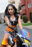 Mumaith Khan movie stills (1)