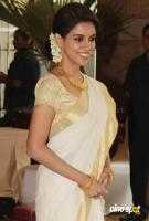 asin in kerala traditional saree photos (11)