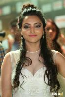 Meghana Gaonkar Actress Photos
