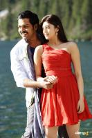 Sakuni movie new stills (8)