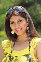 Sara Sharma new stills (21)