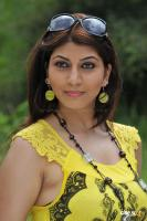 Sara Sharma new stills (25)