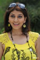 Sara Sharma new stills (26)