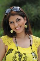 Sara Sharma new stills (27)