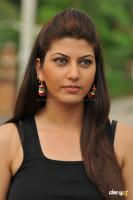 Sara Sharma new stills (32)