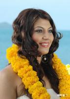 Sara Sharma new stills (4)
