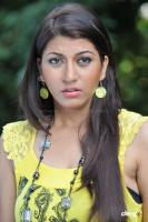 Sara Sharma new stills (43)