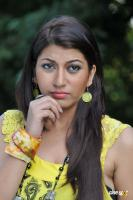 Sara Sharma new stills (44)