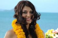 Sara Sharma new stills (6)