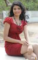Valmiki Movie Photos (15)