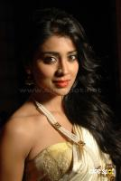Shreya Saran new stills (1)