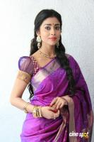Shreya Saran new stills (11)