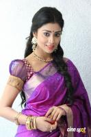 Shreya Saran new stills (12)