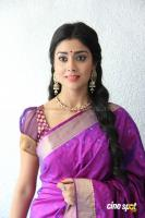 Shreya Saran new stills (28)