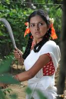 Magima in Sattai Movie Photos (5)