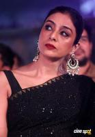Tabu Actress Photos