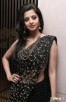 Vedika South Actress Photos
