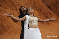 Adugu Movie Stills (13)