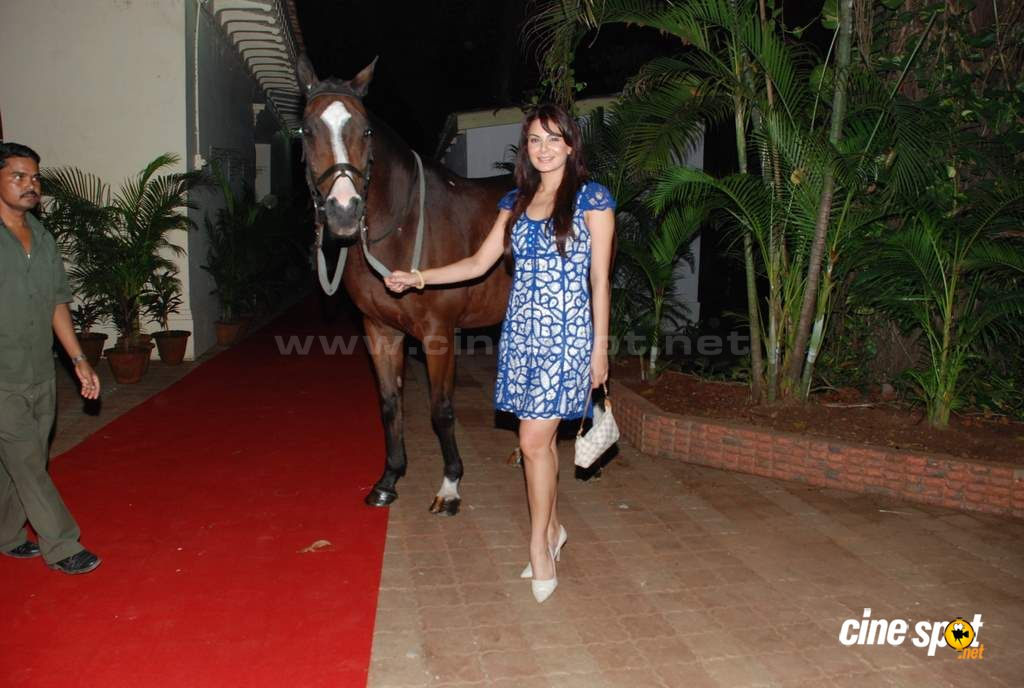 Anchal Kumar and Shawar Ali at the opneing bash Event Photos (12)