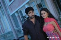 Sweet heart telgu movie photos, stills, pics