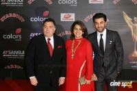 Red Carpet Of The Sansui Stardust Awards Photos
