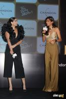 Launch Of Chandon's The Party Starter (10)