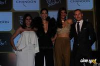 Launch Of Chandon's The Party Starter (14)