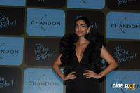 Launch Of Chandon's The Party Starter (18)