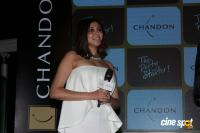 Launch Of Chandon's The Party Starter (2)