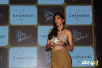 Launch Of Chandon's The Party Starter (5)