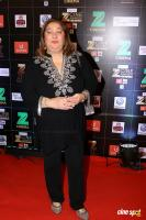 Red Carpet Of Zee Cine Awards 2017 (50)