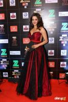 Red Carpet Of Zee Cine Awards 2017 (9)