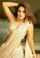 Nidhhi Agerwal Actress Photos