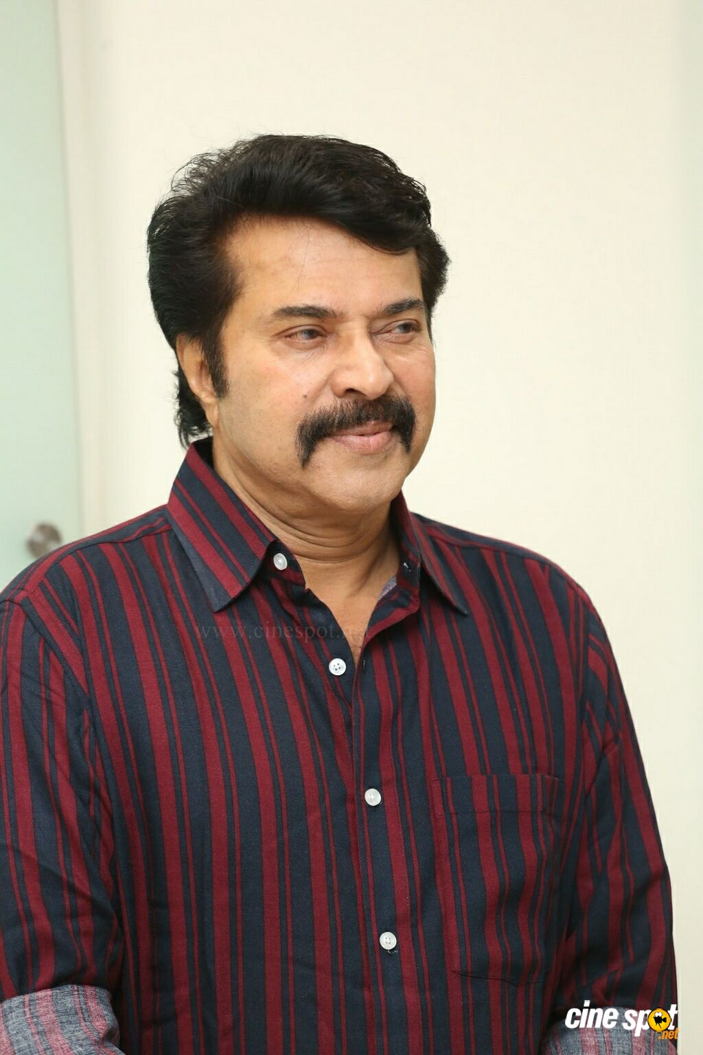 Mammootty at Yatra Movie Press Meet (3)