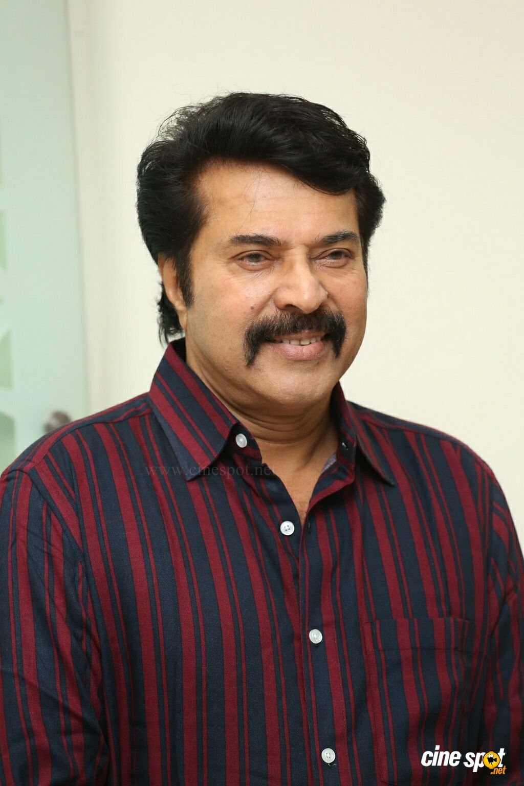 Mammootty at Yatra Movie Press Meet (6)