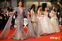 Cannes Film Festival Red Carpet Photos