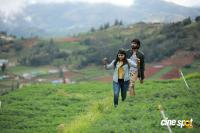 Ullasam Malayalam Movie Photos